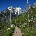 Foto de Cascade Canyon Trail