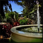 After the hurricane the garden installed a signature grand fountain as a center feature.