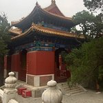 Foto de Temple of Confucius and Guozijian Museum