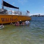 My students enjoying Wild Hearts