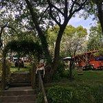 Camel Trail Tea Garden