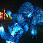 Lagoi Bay Lantern Park Foto