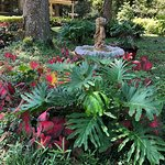 Just an example of the beautiful landscaping surrounding this home