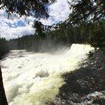 Dawson Falls ภาพถ่าย