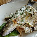 Photo of Doria Restaurant