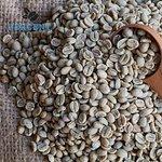We select individual green bean before roasting