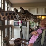 Giraffe Kisses - the only way to start your day