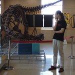 The Shandong beast replica!