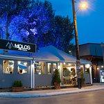 Molos Fish Resto   Seafood   Greek cuisine   Meat