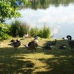 Kiel Botanical Gardens 1