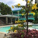 Peaceful lounge and pool area