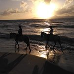 Foto van Erika's Horse Farm