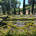 The beautiful and well-manicured gardens