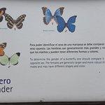 Mariposario. Los carteles informativos son atractivos e interesantes