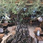 Photo of Olive Tree , vintage caffe / fine dining / lounge