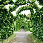 Birr gardens