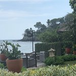 Foto van SENJA Lounge & Dine