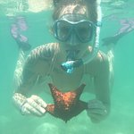 Snorkeling with the starfish at Jumby Bay with CocoVibes Tours