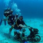 Billede af Sea Fun Divers - Day Trips