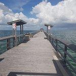 Naples Pier – fénykép