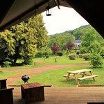 Vue de la terrasse, vue sur le jardin, Chalet toilé Woody, 8 personnes, Camping Le Brévedent