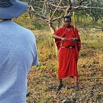 Bringing the Maasai story to you during a traditional medicine walk..