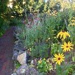 The garden at the entrance