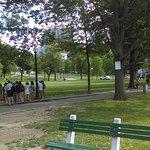 הפארק