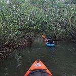 Almost Heaven Kayak Adventures Photo
