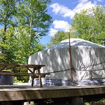 Forest Yurt with hot tub on the deck