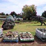 More diniosaurs