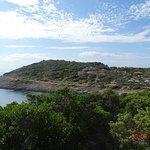 swimming bay 2