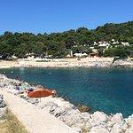 swimming bay 5