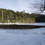 Foto de Huerquehue National Park