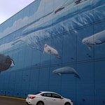 Bild från Whaling Wall