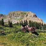 La Plata Canyon tour to Kennebec Pass.
