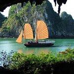 Luxury Tours - Day Cruises