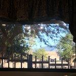 Nice big windows with peaceful views.