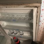 Mouldy smelly fridge