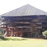 Photo of La Aripuca