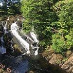 Foto di Swallow Falls