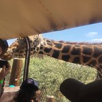 Фотография Out of Africa Wildlife Park