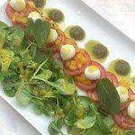 Tomato salad with mozzarella, mango, lettuce and pesto