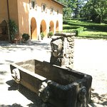 Foto van Parco di Villa Demidoff