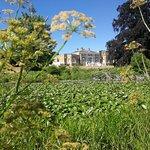 Фотография Waverley Abbey