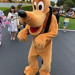 Bilde fra Tokyo Disneyland