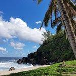Bilde fra Plage de Grande Anse