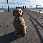 Glenelg Pier – fénykép