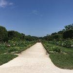 Foto Menagerie du Jardin des Plantes