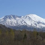 Photo of Mount St. Helens